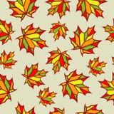 Nahtloses Muster von Ahornblättern Stockbild