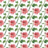 Nahtloses Muster von Aquarellrot-Rosenblumen stock abbildung