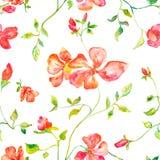 Nahtloses Muster von blühenden Blumen des Frühlingsrotes Lizenzfreies Stockbild