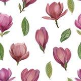 Nahtloses Muster von Blumen und von Blättern der Magnolie stock abbildung