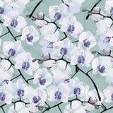 Nahtloses Muster von Blumenorchideen Stockfotografie