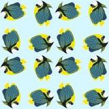 Nahtloses Muster von den Schwimmenfischen lizenzfreie abbildung