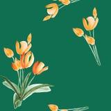 Nahtloses Muster von Frühlingstulpen mit orange Blumen auf einem tiefgrünen Hintergrund watercolor Lizenzfreie Stockbilder