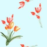 Nahtloses Muster von Frühlingstulpen mit roten Blumen auf einem hellblauen Hintergrund watercolor Stockfotos