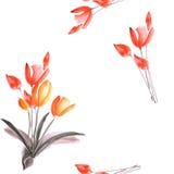 Nahtloses Muster von Frühlingstulpen mit roten Blumen auf einem weißen Hintergrund watercolor Lizenzfreie Stockfotografie