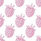 Nahtloses Muster von Himbeeren, Frucht-Muster Lizenzfreie Stockfotografie