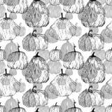 Nahtloses Muster von Kürbisen Stockfotografie