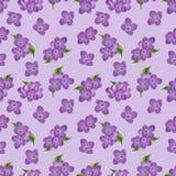 Nahtloses Muster von lila Blumen Lizenzfreie Stockbilder