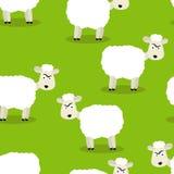 Nahtloses Muster von lustigen Schafen Stockbild