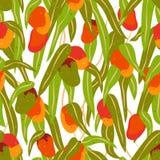 Nahtloses Muster von Mangofrüchten und -blättern stock abbildung