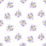 Nahtloses Muster von purpurrot-blauen Blumen des Aquarells Stockfoto