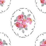 Nahtloses Muster von rosa Blumen und von Grau verlässt in einem ovalen Rahmen auf einem weißen Hintergrund watercolor Stockbild