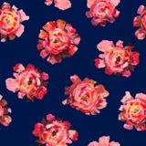 Nahtloses Muster von Rosen, Pfingstrosen blüht mit Bällen Stockfoto