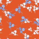 Nahtloses Muster von wilden kleinen weißen und blauen Blumen und von Blumenstrauß auf einem roten Hintergrund watercolor Stockfotos
