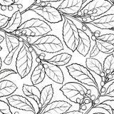 Nahtloses Muster Yerba-Kameraden lizenzfreie abbildung