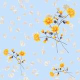 Nahtloses Musteraquarell von beige und gelben Blumen und von Blumensträußen auf einem hellblauen Hintergrund Lizenzfreies Stockfoto