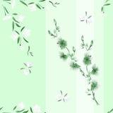 Nahtloses Musteraquarell von weißen und grünen Blumen auf einem grünen Hintergrund mit vertikalen Streifen Lizenzfreie Stockbilder