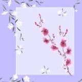 Nahtloses Musteraquarell von weißen und rosa Blumen auf einem violetten Hintergrund Lizenzfreies Stockfoto
