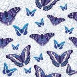 Nahtloses Musterdesign des Vektors mit Schmetterlingen Lizenzfreie Stockfotografie