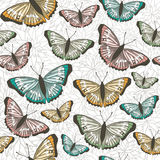 Nahtloses Musterdesign des Vektors mit Schmetterlingen Lizenzfreies Stockbild