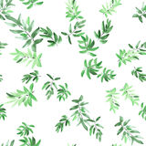 Nahtloses Mustergrün verlässt auf einem weißen Hintergrund watercolor Stockbild