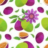 Nahtloses Musterpassionfruit und -blume Stockbilder