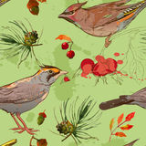 Nahtloses patterm mit Vogel- und Herbstelementen Stockbilder