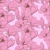 Nahtloses Rosa der Magnolie lizenzfreie stockfotos