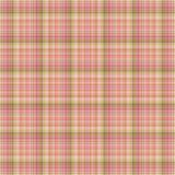 Nahtloses rosafarbenes u. grünes Plaid Lizenzfreies Stockbild