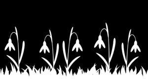 Nahtloses Schattenbildgras und -blumen Stockbilder