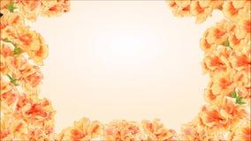 Nahtloses Schleifenschmetterling Vanessa-Videoatalanta und gelber Hibiscus stock footage