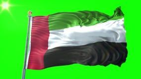 Nahtloses Schleifungsvideo der Wiedergabe 3D Vereinigte Arabische Emirate-Flagge Schönes Textilstoffgewebe-Schleifenwellenartig b vektor abbildung