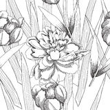 Nahtloses Schwarzweiss-Muster mit flowers-09 Lizenzfreies Stockbild