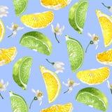 Nahtloses Sommermuster mit Zitrusfruchtscheiben von Zitrone und Kalk tre vektor abbildung
