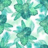 Nahtloses tropisches exotisches Palmblatt-Muster Lizenzfreies Stockbild