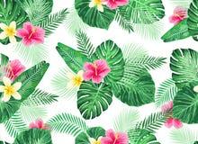 Nahtloses tropisches exotisches Palmblatt-Muster Stockbild