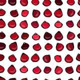 Nahtloses Vektor-Muster mit Moosbeere auf einem weißen Hintergrund Lizenzfreie Stockfotografie