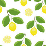 Nahtloses Vektormuster der Zitronenblätter Lizenzfreies Stockfoto