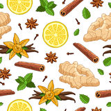 Nahtloses Vektormuster des Ingwers, Zitrone, Vanille, Minze, Zimt Lizenzfreie Stockbilder