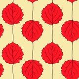 Nahtloses Vektormuster mit Blättern der Espe Stockfotografie