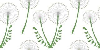 Nahtloses Vektormuster mit Blumen Hintergrund mit grauem Löwenzahn und Blättern auf dem weißen Hintergrund Stockbilder
