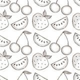 Nahtloses Vektormuster mit Hand gezeichneten Früchten Schwarzweiss-Hintergrund mit Wassermelonen, srawberries und Kirschen Stockfoto