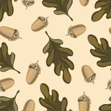 Nahtloses Vektormuster mit Herbstlaub Eichenblatt- und -eichelzeichnung stockfotos