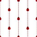 Nahtloses Vektormuster mit Insekten, symmetrischer geometrischer Hintergrund mit hellen kleinen Marienkäfern, über weißem Hinterg Stockfoto