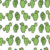 Nahtloses Vektormuster mit stacheliger Erbse des Kaktus Lizenzfreie Stockfotografie