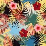 Nahtloses Vektormuster von tropischen Blättern der Palme Stockfotos