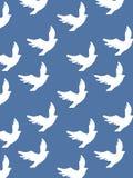 Nahtloses Vogelmuster Lizenzfreies Stockfoto