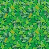 Nahtloses Wiederholungsmuster des grünen Laubs Stockbild