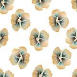 Nahtloses wildes Blumenmuster mit Kapuzinerkäse Hibiscusblumen auf weißem Hintergrund botanische Motive zerstreuten gelegentliche stockfotos
