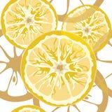 Nahtloses Zitrusfruchtmuster Stockfoto